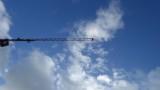 Taylor Street Construction Crane