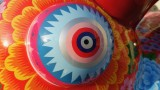 Dragon Fortune Eye Close Up