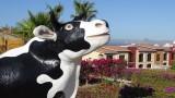 Hacienda Encantada Cow