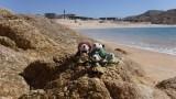 The Pandafords visit Santa Maria Beach Los Cabos