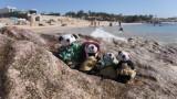 The Pandafords visit Chileno Beach