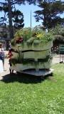 San Francisco Botanical Garden Flower Piano