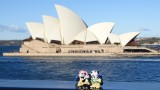 The Pandafords visit Sydney Harbour
