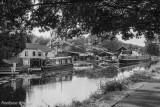 Erewash Canal, July 2018.jpg