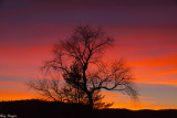 After Sunset - Cades Cove