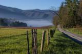 A Distant Fog