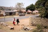 Soweto Township Life