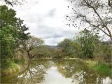 Ehlanzani Pond