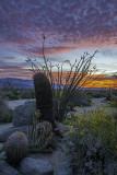 Sunrise at Anza Borrego Desert State Park, CA