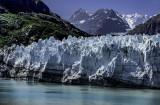 Margerie Glacier.jpg