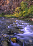 Virgin River, Zion Canyon, Zion National Park, UT