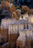 Intimate View of Hoodoos, Bryce Canyon National Park, UT