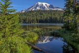 Reflection Lake, Mt. Rainier National Park, WA