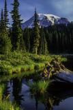 (PNW3) Reflection Lake, Mt. Rainier, WA