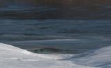 snowscape 725