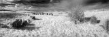 ballynoe stone circle panorama.jpg
