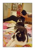 Kitty cat, 6 december 2015