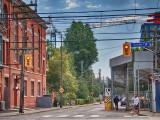 Toronto's urban jungle PA071712_p1Resized.JPG