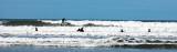 Saunton Sands Surfers