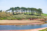 The river Otter estuary at Budleigh Salterton