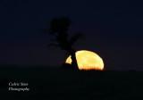 Sunsets , Sunrise, Moonsets & Moonrise