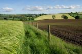 Hele Payne Farm near Bradninch in Devon