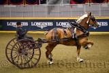 Kyle Forsyth driving draft horse cart at NASHHCS Classic Cart Series at the Royal Horse Show Ricoh Coliseum Toronto