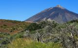 Volcano Teide -3