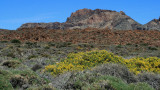 Los Realejos volcano Teide