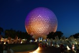 Epcot Gallery