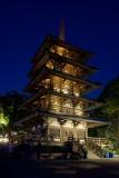 Japan pagoda at night