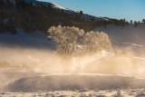 Yellowstone NP 20180121_1291.jpg