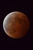 Lunar Eclipse 8 October 2014