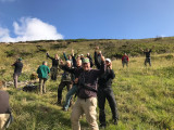 Birds in Azores - Birders in Action