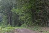 wandeling Landschap Maasmechelen