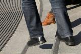 shoe/sandal/slipper