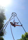 30. De Berenis Circus
