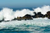 2016-11-12a_Pebble_Beach__17-Mile_Drive--1720--_RLH7649.jpg