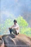 The Kornak In the Smoke