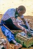 The Street Shoemaker