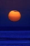 Sunset Of Love