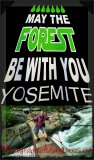 May the Forest Be With You!!!