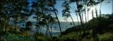 Trinidad Cove