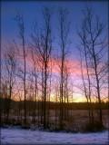 Whitehorse Sunrise