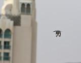 Gråfiskare  Pied Kingfisher  Ceryle rudis