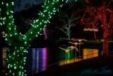2017 - Festival of Lights, Dufferin Island - Niagara Falls, Ontario - Canada