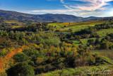 2017 - Chianti, Tuscany - Italy