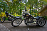 Harleys May 19