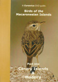 Cursorius DVD Guide - Birds of the Macaronesian Islands