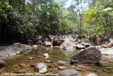 Finch Hatton Gorge